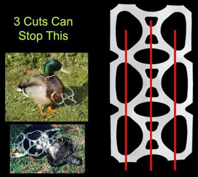 three_cuts_save_lives