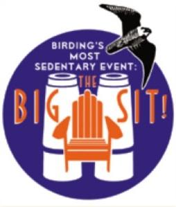 the_big_sit