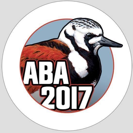 aba_boty-2017