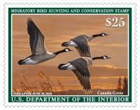 2017-2018 Migratory Duck Stamp